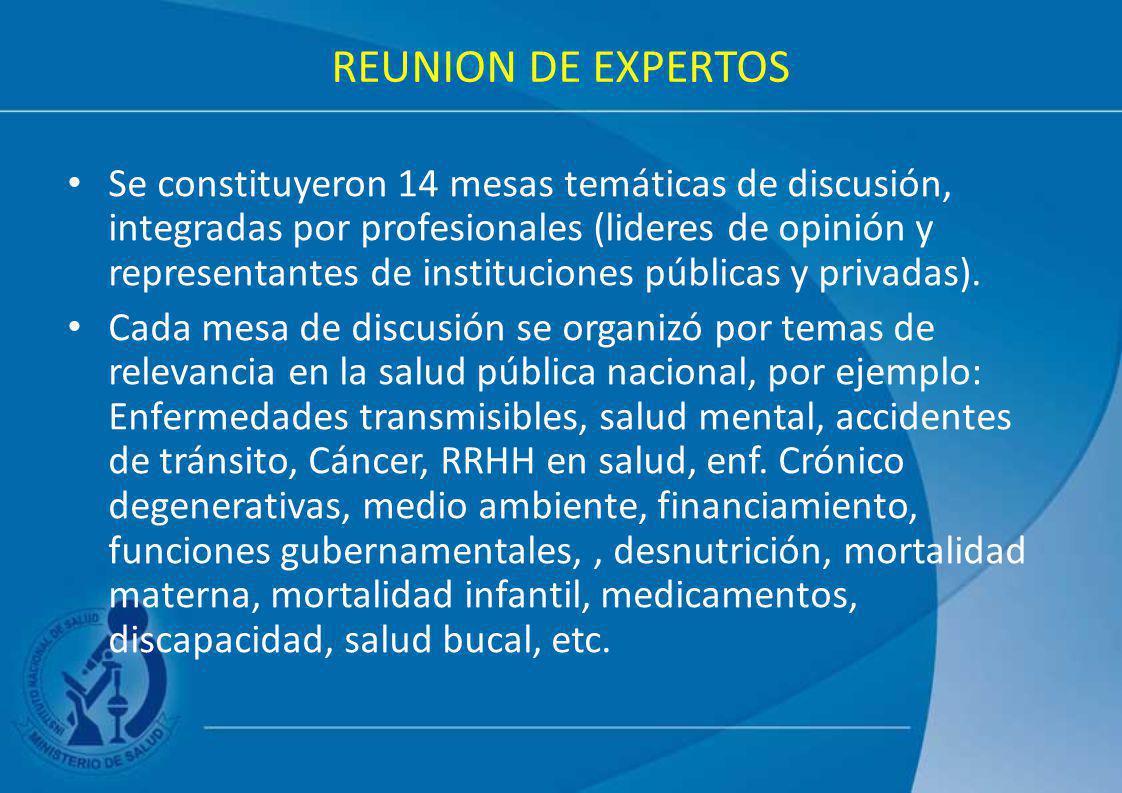REUNION DE EXPERTOS Se constituyeron 14 mesas temáticas de discusión, integradas por profesionales (lideres de opinión y representantes de institucion