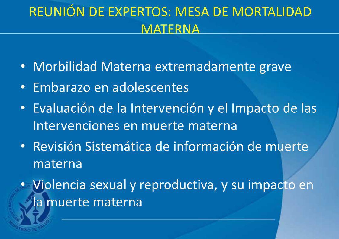 REUNIÓN DE EXPERTOS: MESA DE MORTALIDAD MATERNA Morbilidad Materna extremadamente grave Embarazo en adolescentes Evaluación de la Intervención y el Im