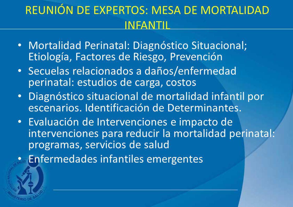 REUNIÓN DE EXPERTOS: MESA DE MORTALIDAD INFANTIL Mortalidad Perinatal: Diagnóstico Situacional; Etiología, Factores de Riesgo, Prevención Secuelas rel