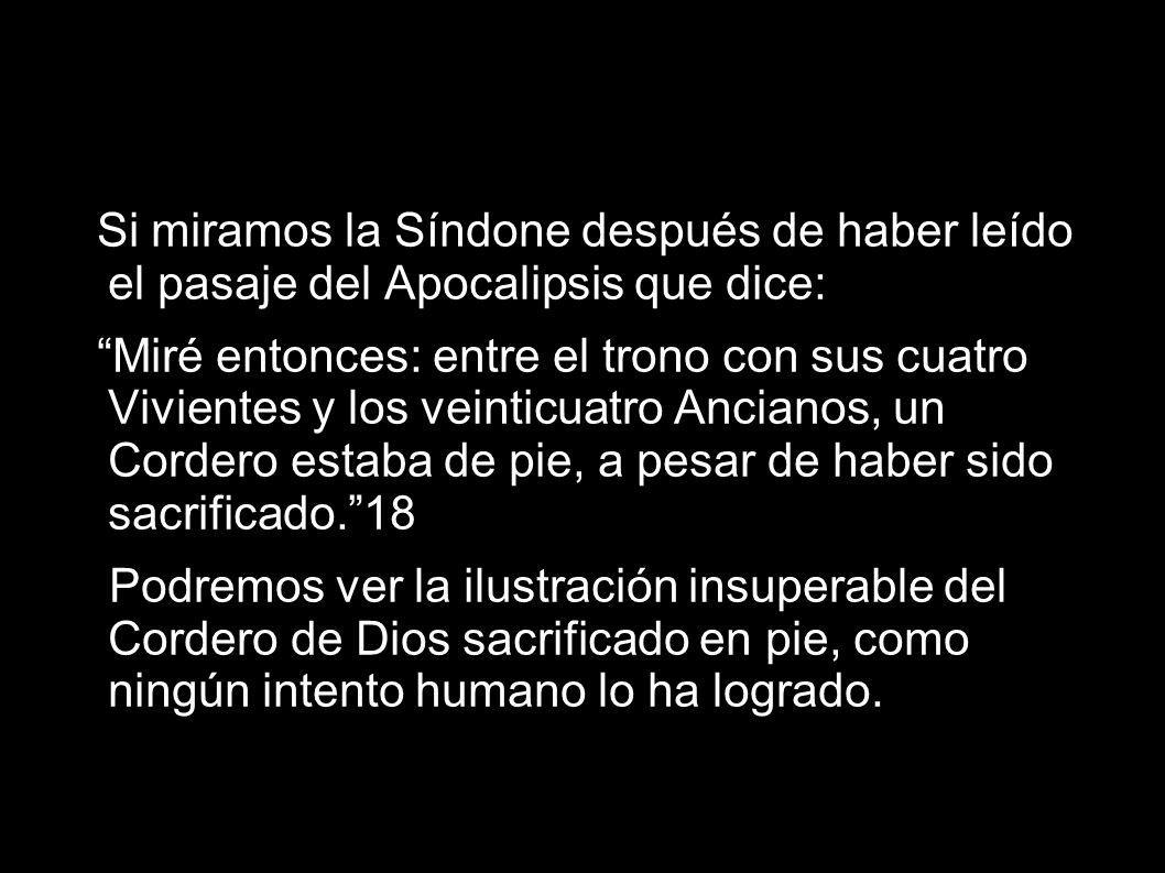 Si miramos la Síndone después de haber leído el pasaje del Apocalipsis que dice: Miré entonces: entre el trono con sus cuatro Vivientes y los veinticu