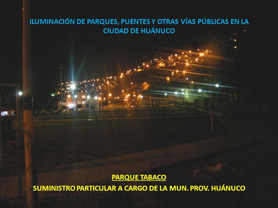 ILUMINACIÓN DE PARQUES, PUENTES Y OTRAS VÍAS PÚBLICAS EN LA CIUDAD DE HUÁNUCO PARQUE TABACO SUMINISTRO PARTICULAR A CARGO DE LA MUN. PROV. HUÁNUCO