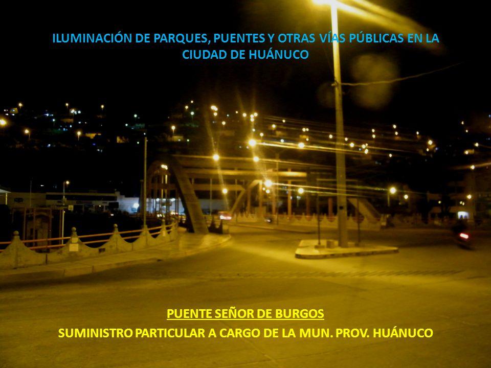 ILUMINACIÓN DE PARQUES, PUENTES Y OTRAS VÍAS PÚBLICAS EN LA CIUDAD DE HUÁNUCO PUENTE SEÑOR DE BURGOS SUMINISTRO PARTICULAR A CARGO DE LA MUN. PROV. HU