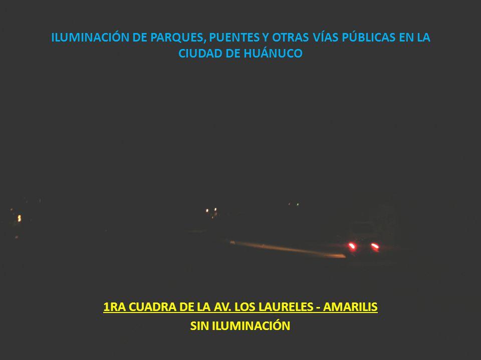 ILUMINACIÓN DE PARQUES, PUENTES Y OTRAS VÍAS PÚBLICAS EN LA CIUDAD DE HUÁNUCO 1RA CUADRA DE LA AV. LOS LAURELES - AMARILIS SIN ILUMINACIÓN