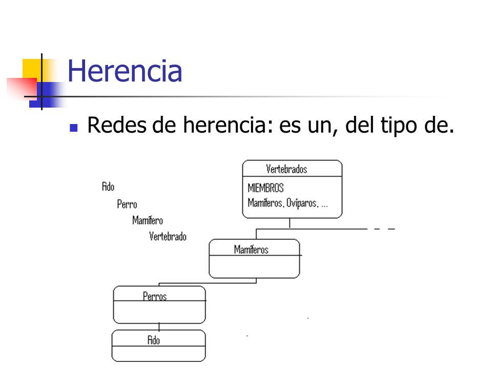 Herencia Herencia única o simple Herencia múltiple.