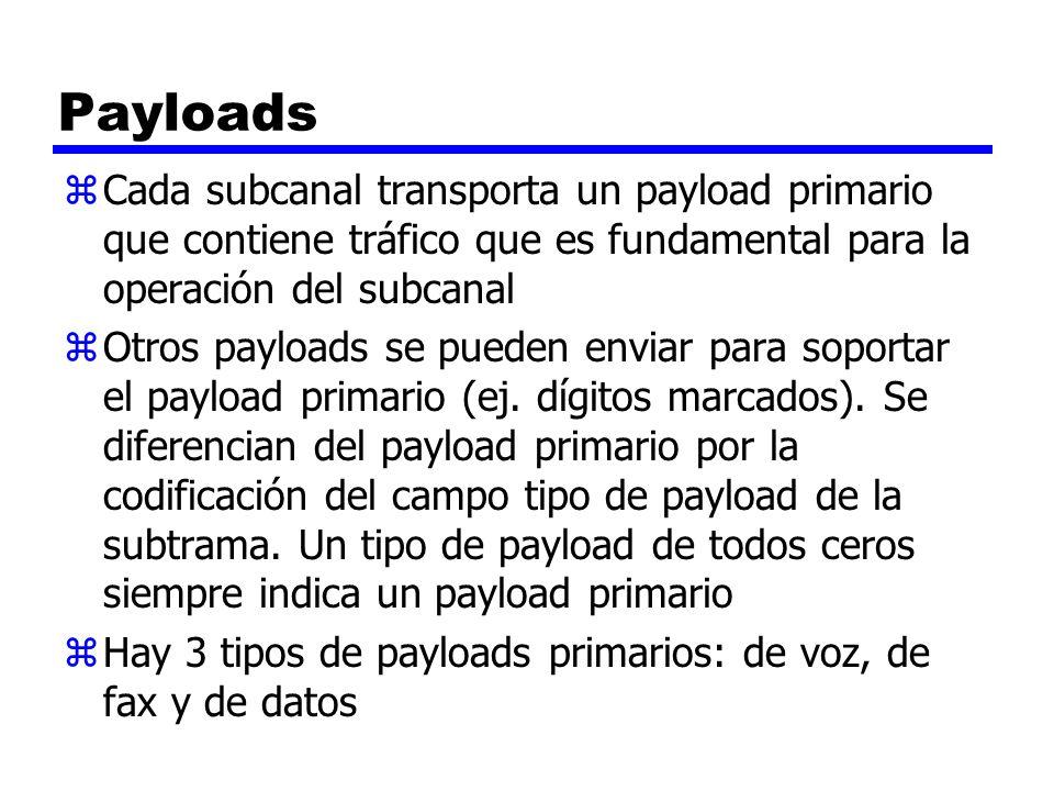 Payloads zCada subcanal transporta un payload primario que contiene tráfico que es fundamental para la operación del subcanal zOtros payloads se puede