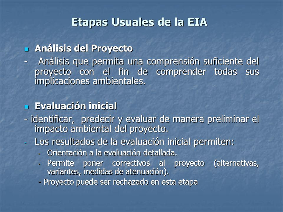 Etapas Usuales de la EIA Análisis del Proyecto Análisis del Proyecto - Análisis que permita una comprensión suficiente del proyecto con el fin de comprender todas sus implicaciones ambientales.
