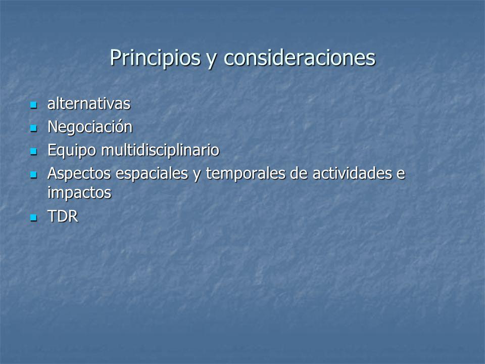 Principios y consideraciones alternativas alternativas Negociación Negociación Equipo multidisciplinario Equipo multidisciplinario Aspectos espaciales y temporales de actividades e impactos Aspectos espaciales y temporales de actividades e impactos TDR TDR