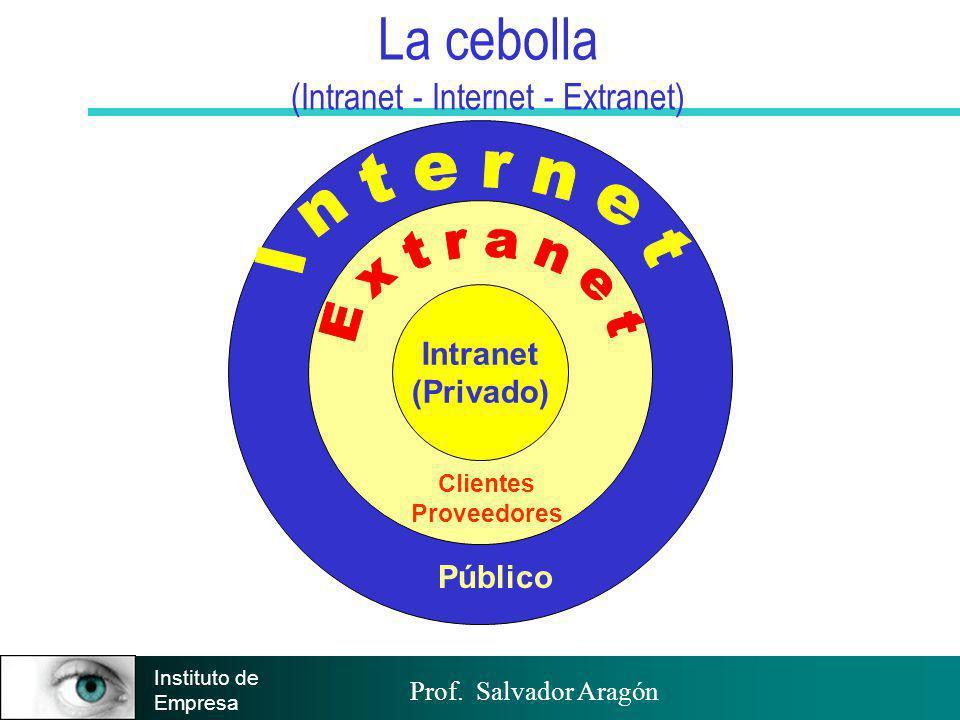 Prof. Salvador Aragón Instituto de Empresa Público La cebolla (Intranet - Internet - Extranet) Clientes Proveedores Intranet (Privado)