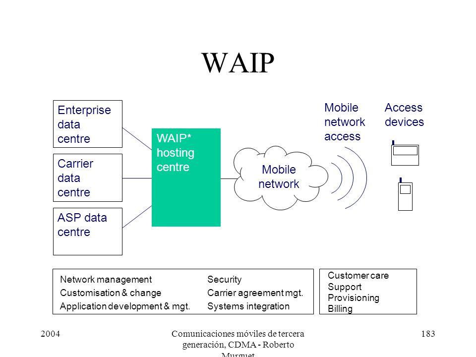 2004Comunicaciones móviles de tercera generación, CDMA - Roberto Murguet 183 WAIP Network management Customisation & change Application development & mgt.