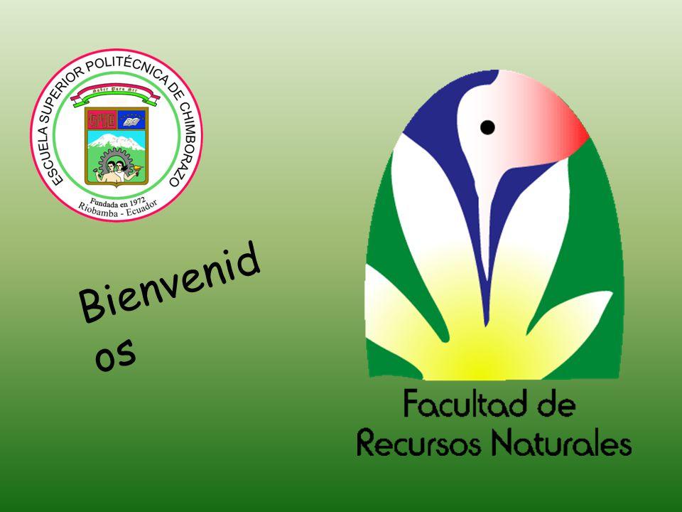 VISITAS Y RELACIONES IMPORTANTES Representante del Instituto de la Antártida Comisión evaluadora del CONEA