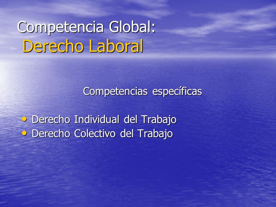 Competencia Global: Derecho Laboral Competencias específicas Derecho Individual del Trabajo Derecho Individual del Trabajo Derecho Colectivo del Traba