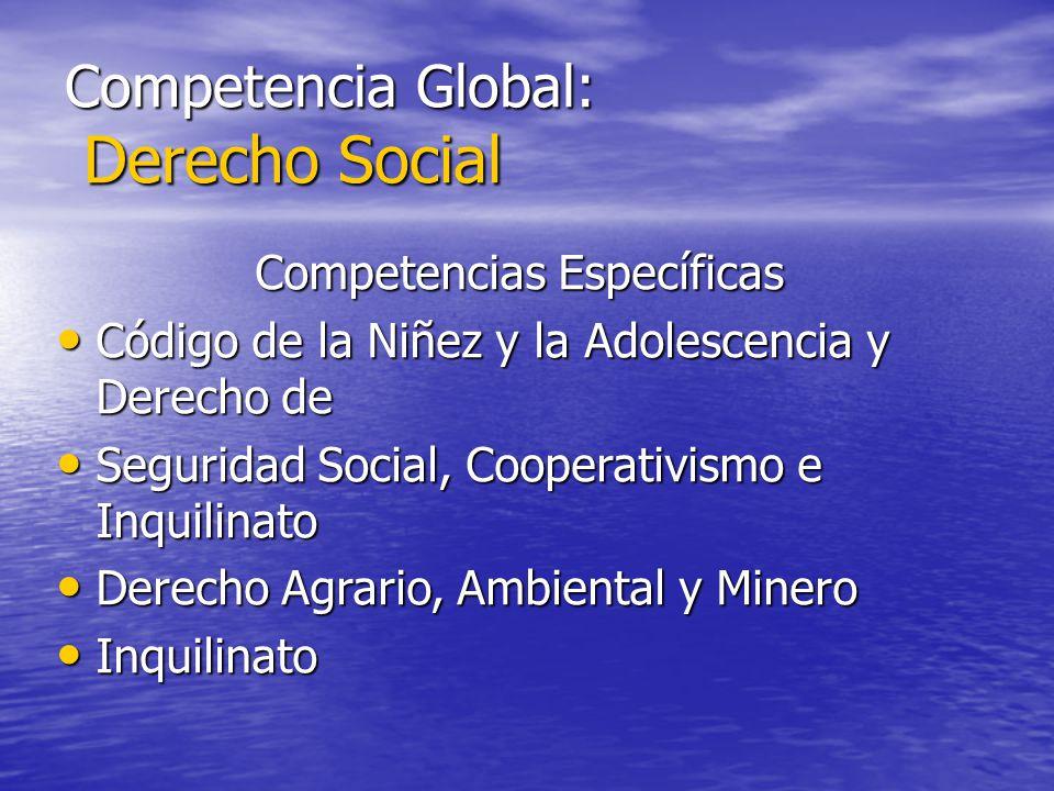 Competencia Global: Derecho Social Competencias Específicas Código de la Niñez y la Adolescencia y Derecho de Código de la Niñez y la Adolescencia y D