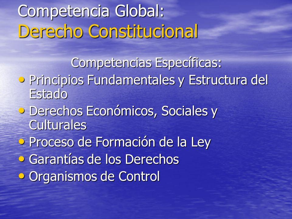 Competencia Global: Derecho Constitucional Competencias Específicas: Principios Fundamentales y Estructura del Estado Principios Fundamentales y Estru