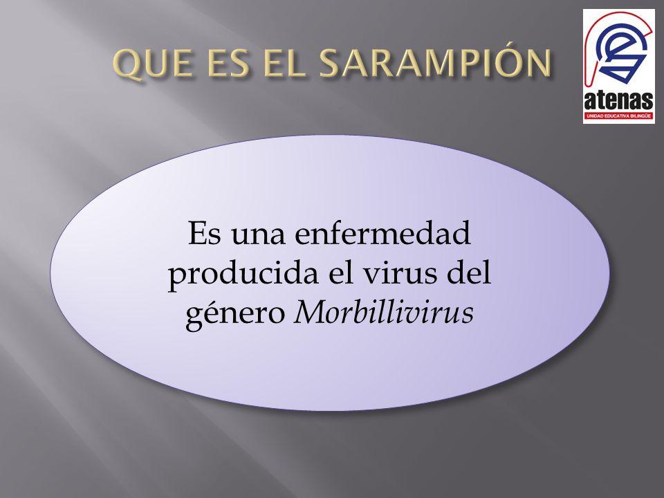 Es una enfermedad producida el virus del género Morbillivirus