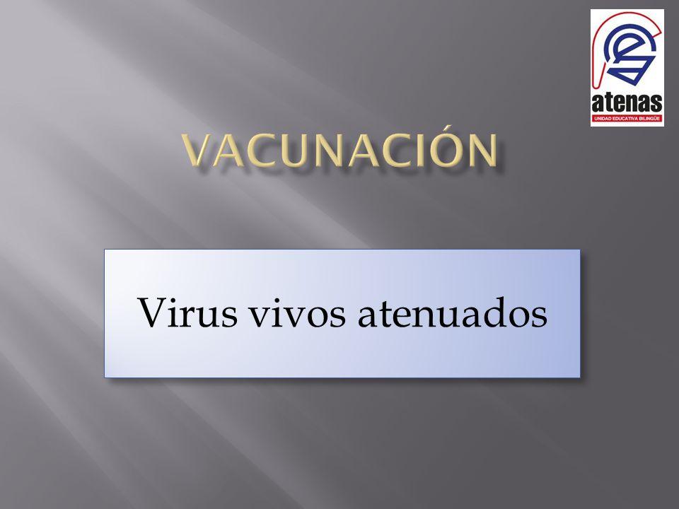 Virus vivos atenuados