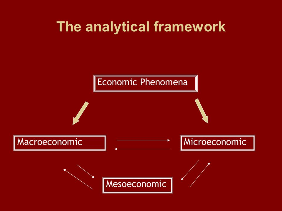 The analytical framework Macroeconomic Mesoeconomic Microeconomic Economic Phenomena