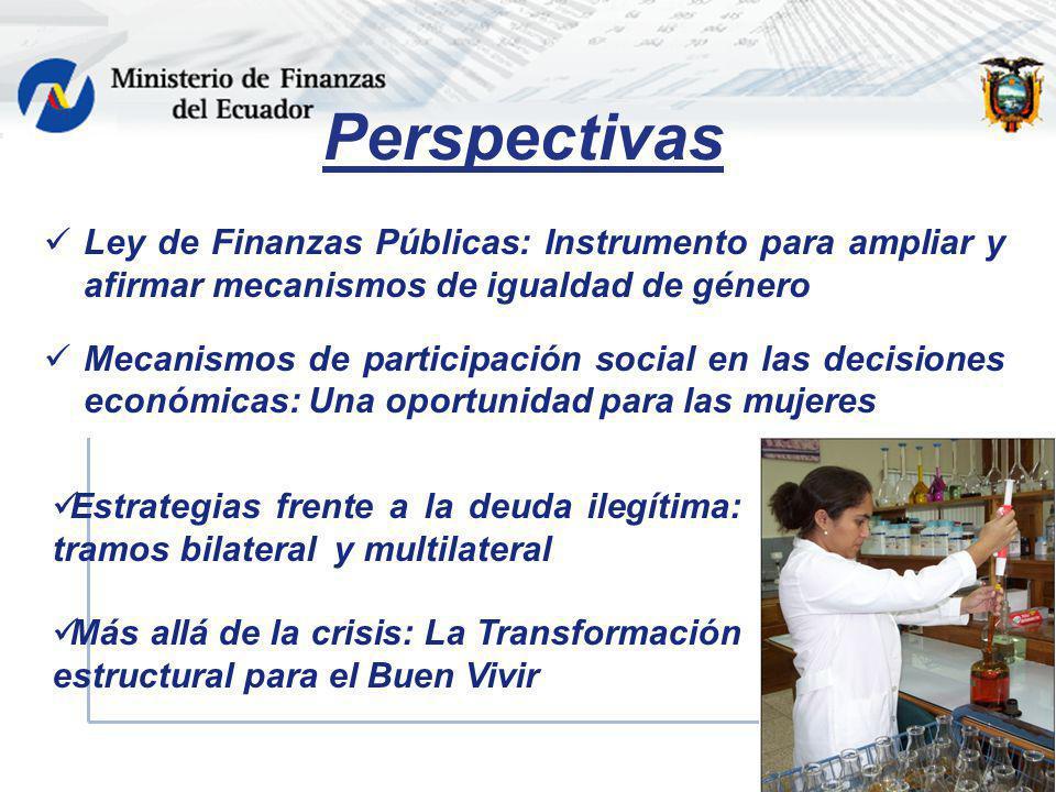 Perspectivas Ley de Finanzas Públicas: Instrumento para ampliar y afirmar mecanismos de igualdad de género Mecanismos de participación social en las d