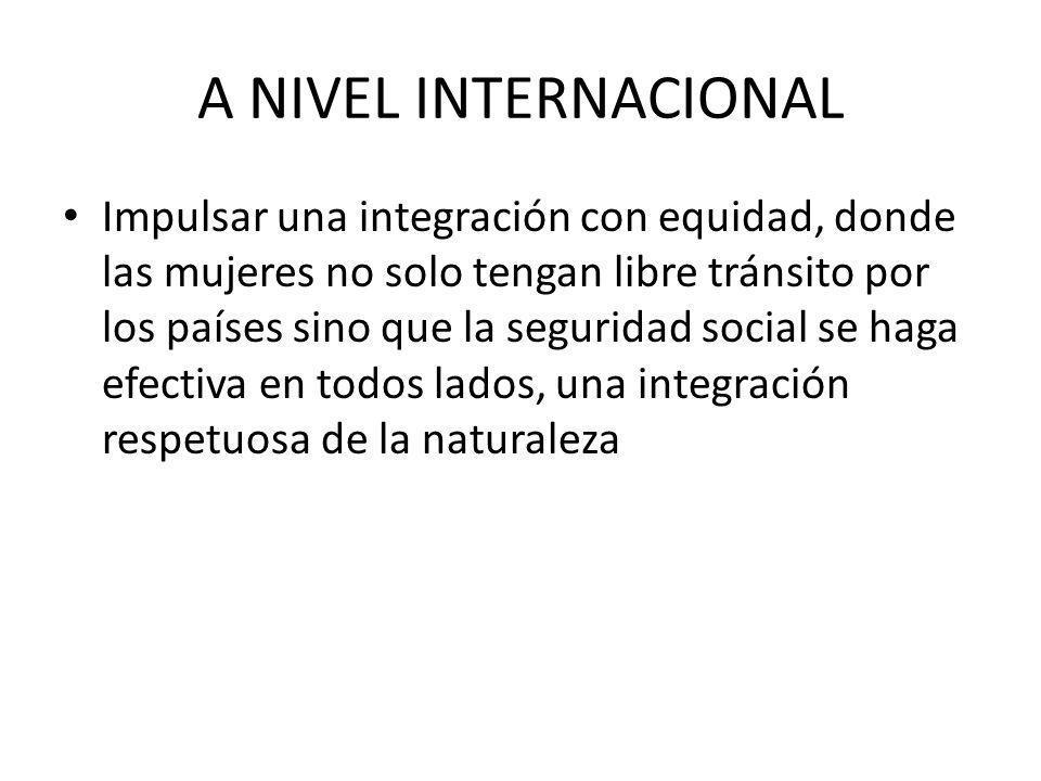 A NIVEL INTERNACIONAL Impulsar una integración con equidad, donde las mujeres no solo tengan libre tránsito por los países sino que la seguridad social se haga efectiva en todos lados, una integración respetuosa de la naturaleza