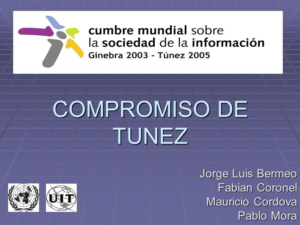 Cumbre Mundial sobre la Sociedad de la Información CMSI, del 16 al 18 de noviembre de 2005 Segunda fase de la Cumbre Mundial sobre la Sociedad de la Información (CMSI).