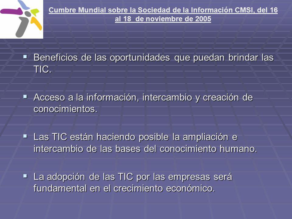 Cumbre Mundial sobre la Sociedad de la Información CMSI, del 16 al 18 de noviembre de 2005 Beneficios de las oportunidades que puedan brindar las TIC.