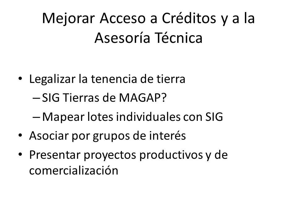 Mejorar Acceso a Créditos y a la Asesoría Técnica Legalizar la tenencia de tierra – SIG Tierras de MAGAP? – Mapear lotes individuales con SIG Asociar