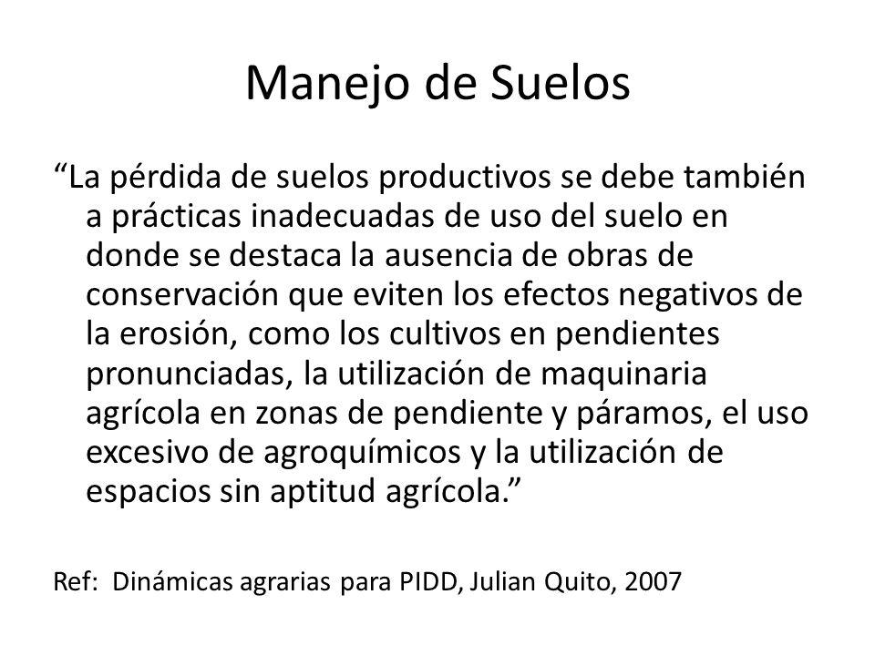 Manejo de Suelos La pérdida de suelos productivos se debe también a prácticas inadecuadas de uso del suelo en donde se destaca la ausencia de obras de