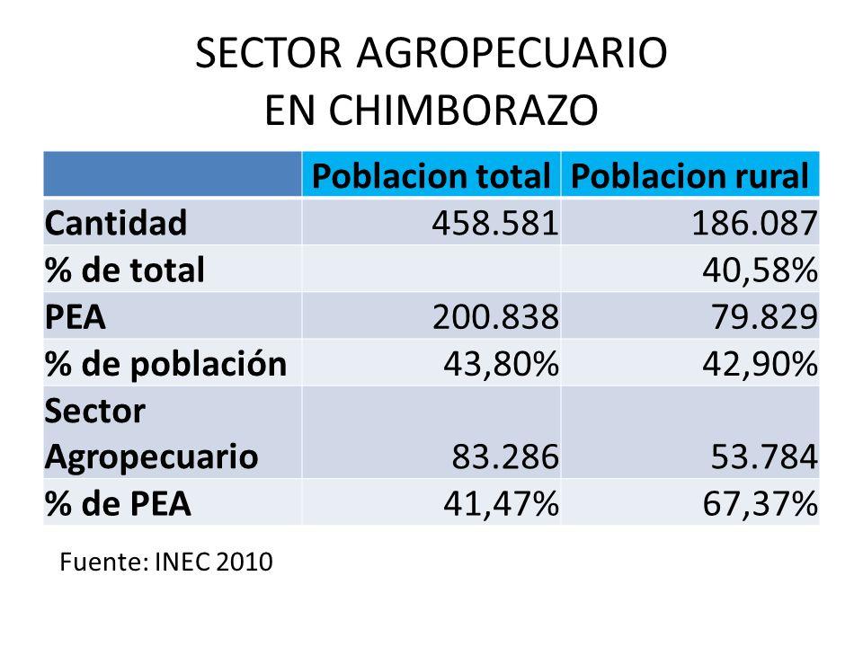 SECTOR AGROPECUARIO EN CHIMBORAZO Poblacion totalPoblacion rural Cantidad 458.581186.087 % de total 40,58% PEA 200.83879.829 % de población 43,80%42,9