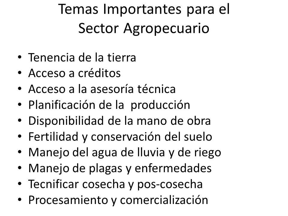 Temas Importantes para el Sector Agropecuario Tenencia de la tierra Acceso a créditos Acceso a la asesoría técnica Planificación de la producción Disp
