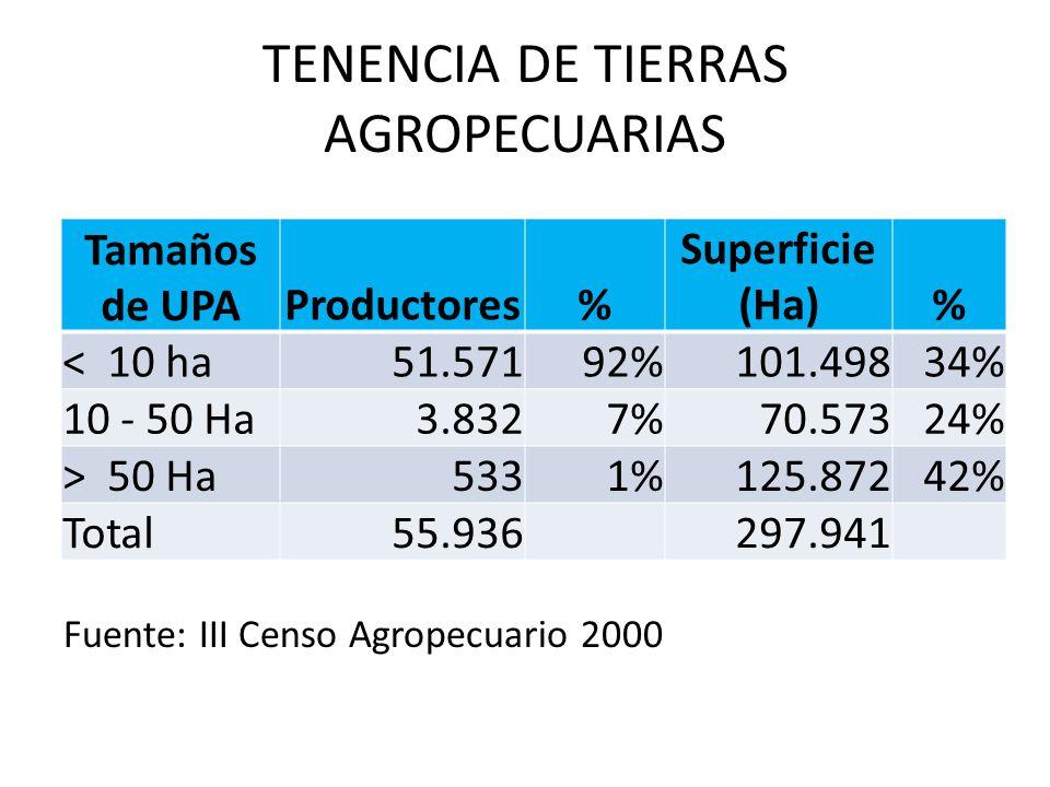 TENENCIA DE TIERRAS AGROPECUARIAS Tamaños de UPA Productores% Superficie (Ha)% < 10 ha51.57192%101.49834% 10 - 50 Ha3.8327%70.57324% > 50 Ha5331%125.8