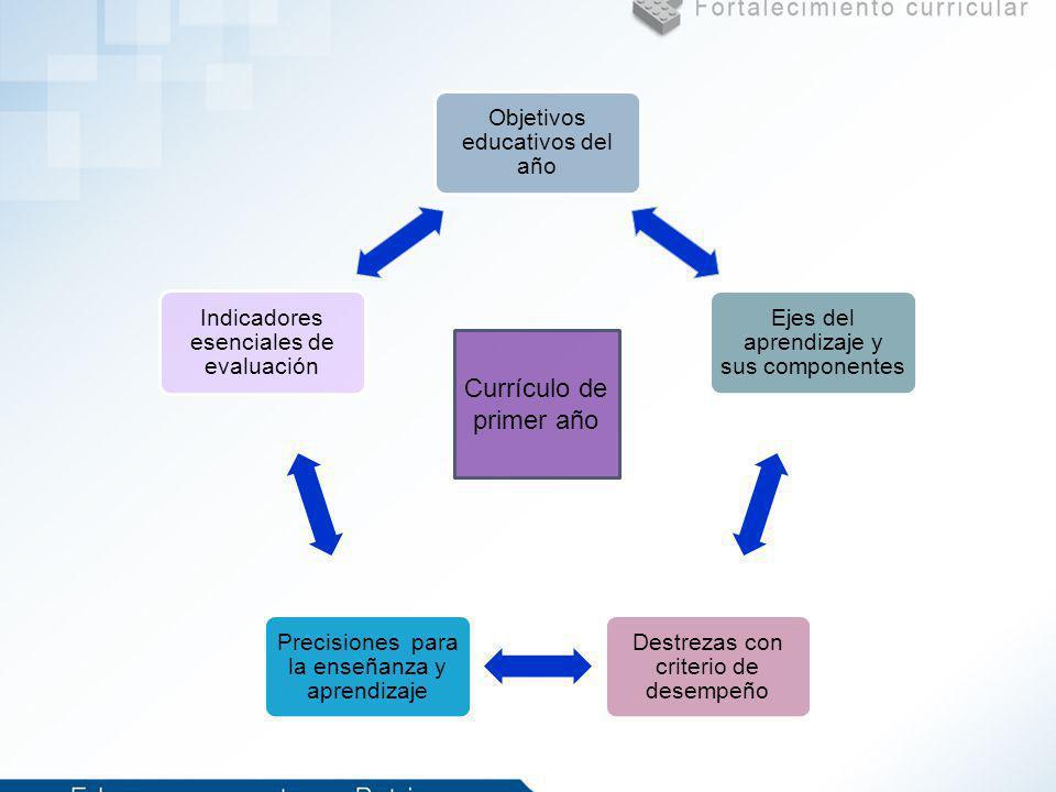 Objetivos educativos del año Ejes del aprendizaje y sus componentes Destrezas con criterio de desempeño Precisiones para la enseñanza y aprendizaje In