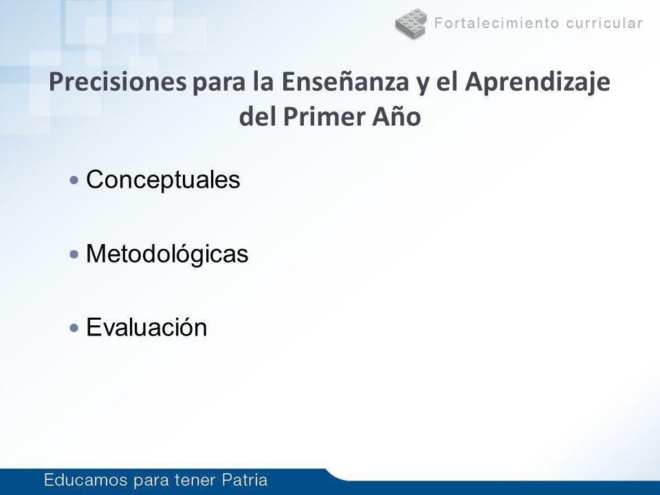 Precisiones para la Enseñanza y el Aprendizaje del Primer Año Conceptuales Metodológicas Evaluación