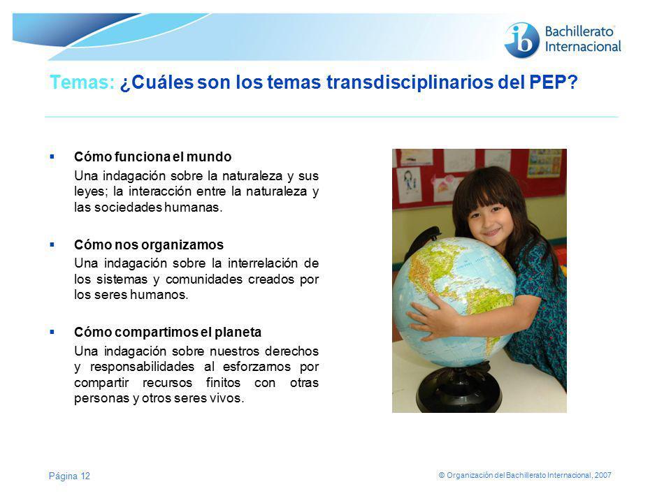© Organización del Bachillerato Internacional, 2007 Temas: ¿Cuáles son los temas transdisciplinarios del PEP? Cómo funciona el mundo Una indagación so