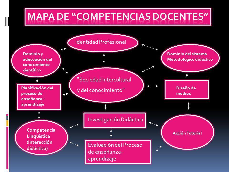 Identidad Profesional Sociedad Intercultural y del conocimiento Investigación Didáctica Evaluación del Proceso de enseñanza - aprendizaje Dominio y ad