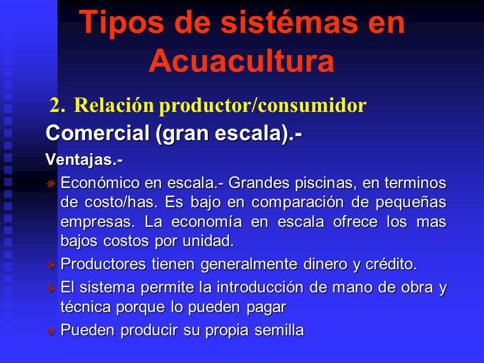 Tipos de sistémas en Acuacultura Comercial (gran escala).- Ventajas.- ¯ Económico en escala.- Grandes piscinas, en terminos de costo/has.