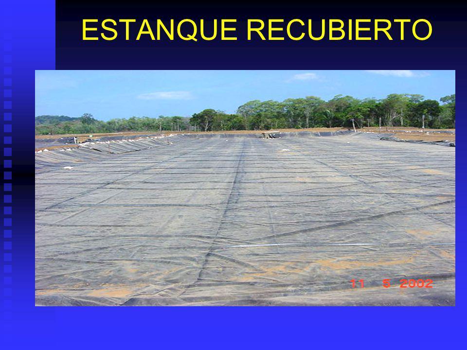 ESTANQUE TIERRA