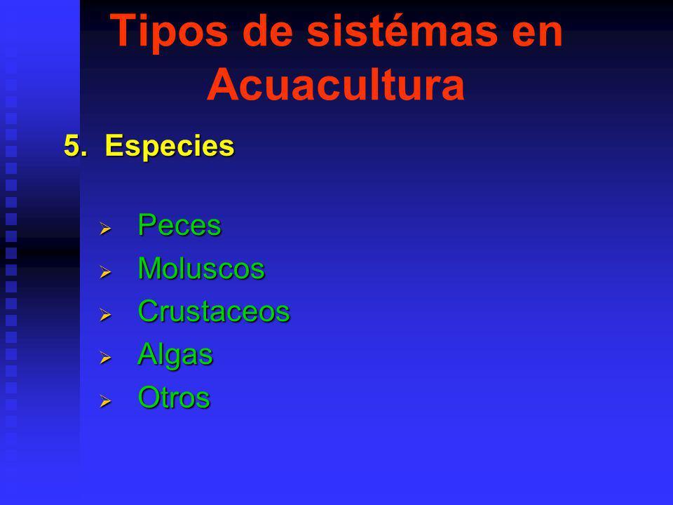 Tipos de sistémas en Acuacultura 5.