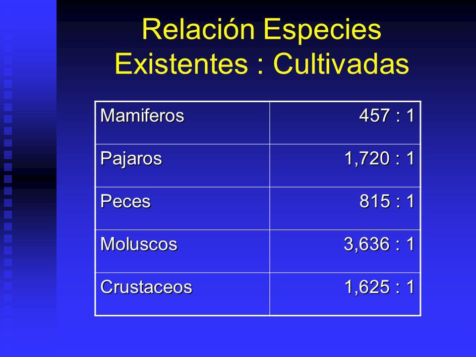 Relación Especies Existentes : Cultivadas Mamiferos 457 : 1 Pajaros 1,720 : 1 Peces 815 : 1 Moluscos 3,636 : 1 Crustaceos 1,625 : 1