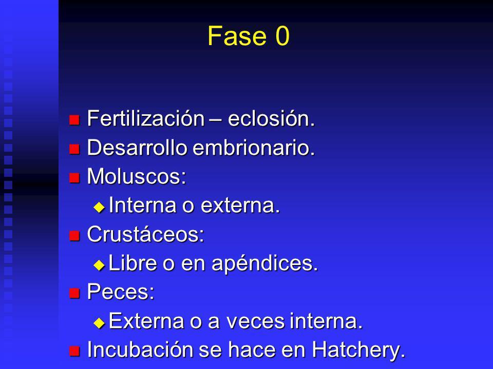Fase 0 Fertilización – eclosión.Fertilización – eclosión.