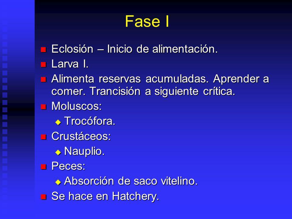 Fase I Eclosión – Inicio de alimentación.Eclosión – Inicio de alimentación.