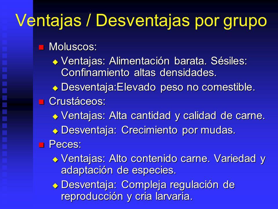 Ventajas / Desventajas por grupo Moluscos: Moluscos: Ventajas: Alimentación barata.