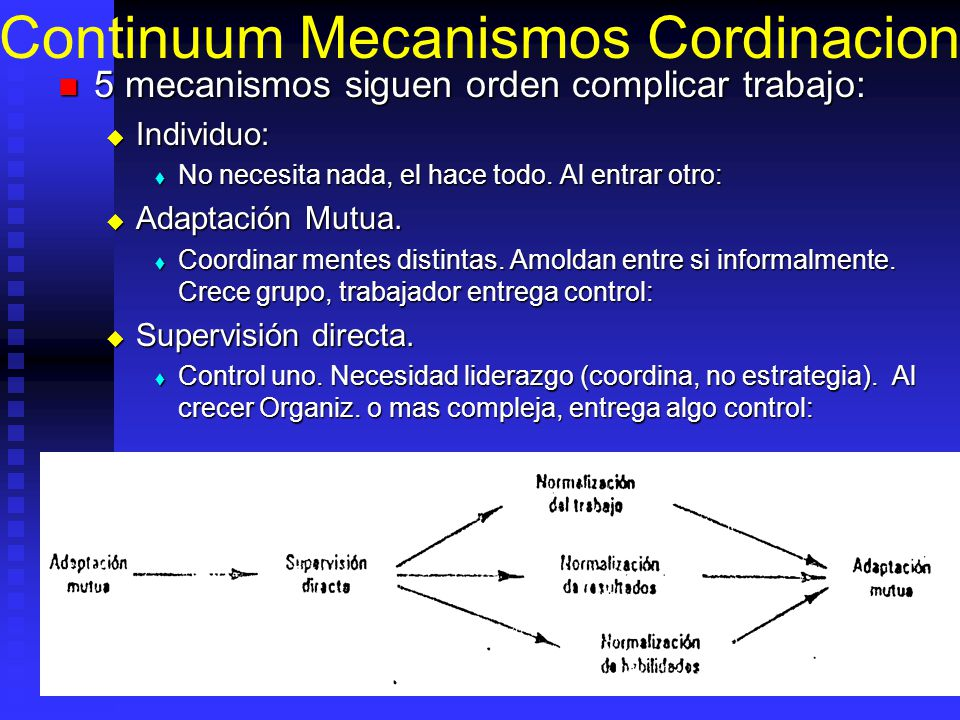 Continuum Mecanismos Cordinacion 5 mecanismos siguen orden complicar trabajo: 5 mecanismos siguen orden complicar trabajo: Individuo: Individuo: No ne