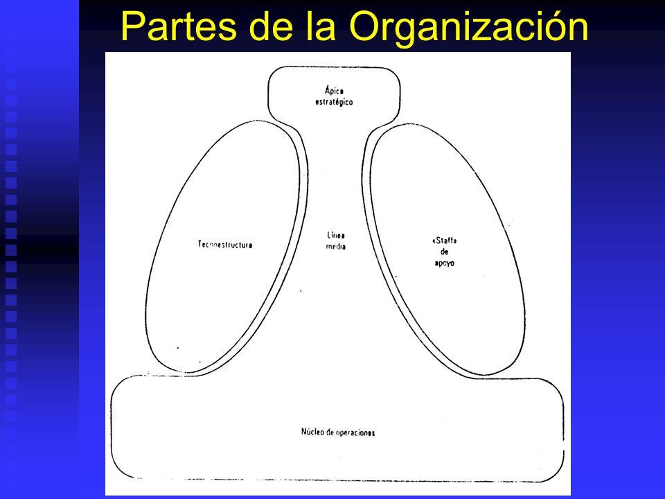 Partes de la Organización