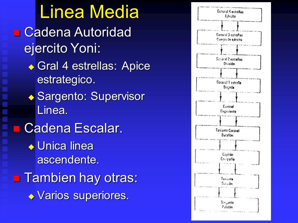 Linea Media Cadena Autoridad ejercito Yoni: Cadena Autoridad ejercito Yoni: Gral 4 estrellas: Apice estrategico. Gral 4 estrellas: Apice estrategico.
