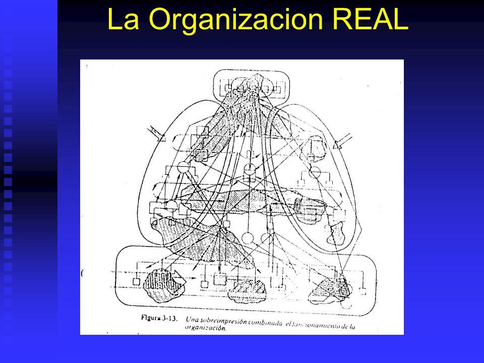 La Organizacion REAL