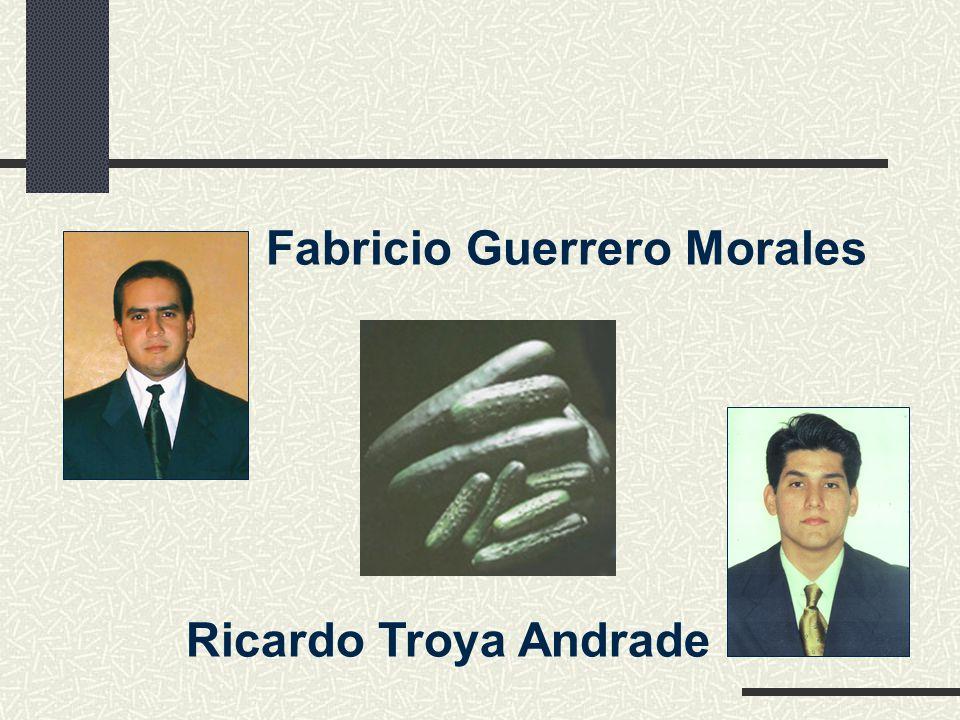 Ricardo Troya Andrade Fabricio Guerrero Morales