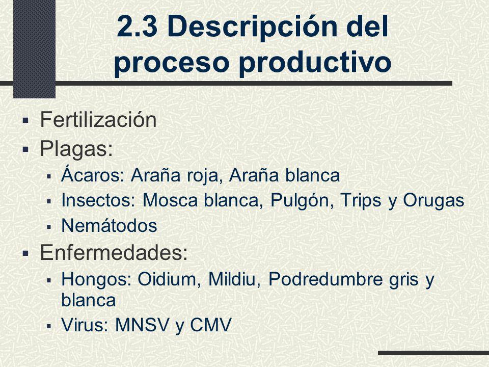 2.3 Descripción del proceso productivo Fertilización Plagas: Ácaros: Araña roja, Araña blanca Insectos: Mosca blanca, Pulgón, Trips y Orugas Nemátodos Enfermedades: Hongos: Oidium, Mildiu, Podredumbre gris y blanca Virus: MNSV y CMV