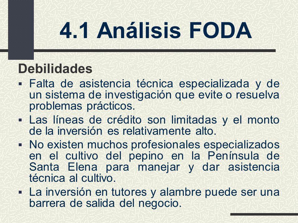 4.1 Análisis FODA Debilidades Falta de asistencia técnica especializada y de un sistema de investigación que evite o resuelva problemas prácticos. Las