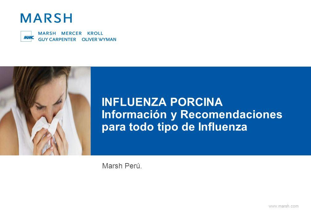 1 Marsh Peru S.A.INFLUENZA PORCINA ¿Qué es la influenza porcina.