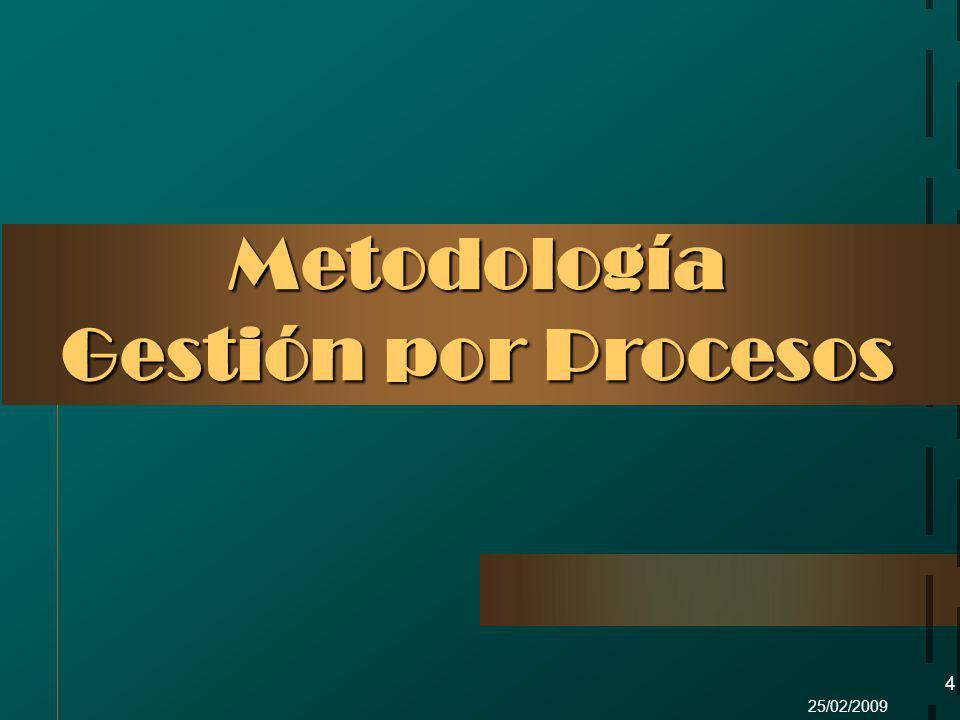 25/02/2009 4 Metodología Gestión por Procesos