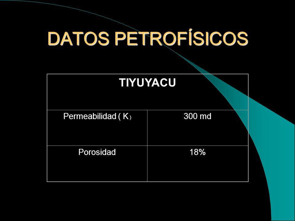 FORMACIÓN RECEPTORA DEL AGUA DE FORMACIÓN El terciario en el Ecuador está representado por la formación tiyuyacu, cuyo espesor es aproximadamente 250